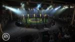 EA SPORTS MMA NG Intl Venues 1