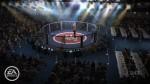 EA SPORTS MMA NG Intl Venues 5