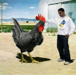 mybigblackcock