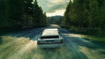 DiRT3_Rally_6_tif_jpgcopy