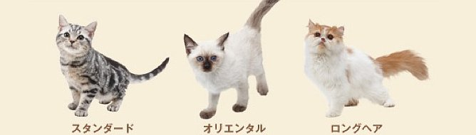 Nintendogs Cats Website Updated With A List Of Breeds For Each Game Videos Vg247