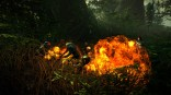 27794TheWitcher2_10_fight_forrest