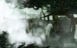 Wetland_Glade_09