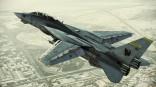 36345ACAH_F-14D_002