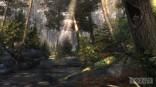 36902sc5_pub_stg_forest_001