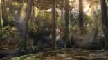 36903sc5_pub_stg_forest_003