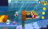 Super Mario Land 3D (16)