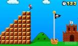 Super Mario Land 3D (17)