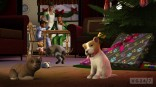 ts3_pets_holiday_cat_dog