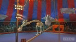 39657Melman_and_Gloria_on_High_Wire
