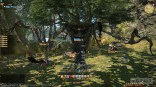 _final_fantasy_xiv_realm_reborn_gamescom_03
