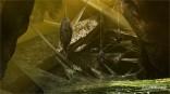 Monster-Hunter-4_2012_10-11-12_002