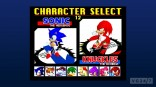sonic_the_fighters1