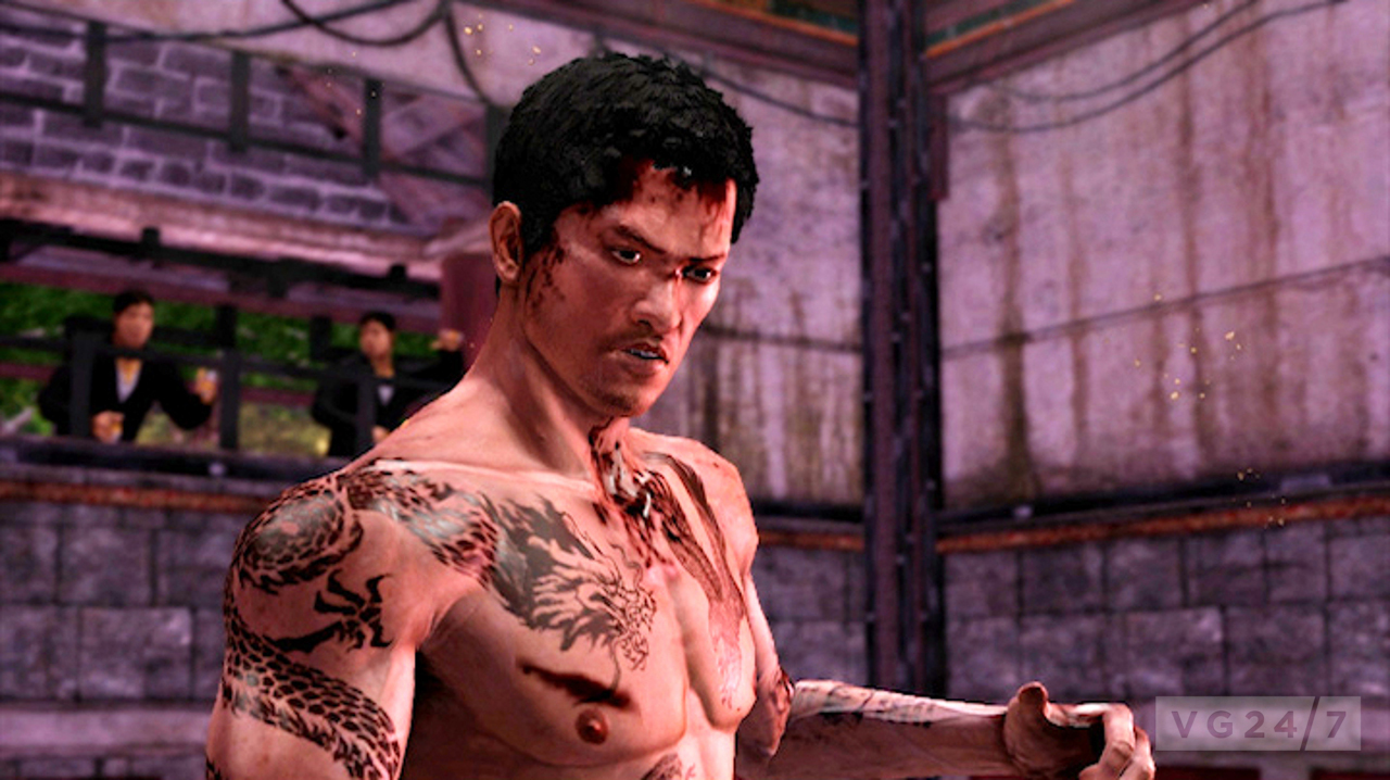 sleeping dogs zodiac 7