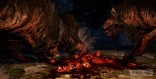 dragons dogma dark arisen 8