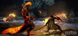 dragons dogma dark arisen 9