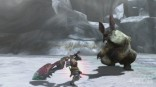 monster_hunter_3_ultimate_lagombi_1