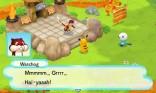 Pokémon Mystery Dungeon Gates to Infinity 19