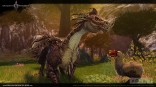 0You_can_discover_this_rare_Dragon_in_the_woods_of_Ornost
