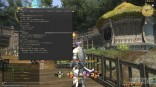 Final Fantasy XIV beta 23
