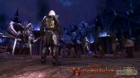 Neverwinter_Screenshot_RotheValley_041613_jpeg5