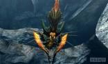 Monster Hunter 4 10