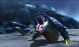 Monster Hunter 4 14