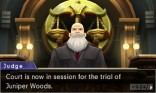 phoenix_wright_ace_attorney_dual_destinies_6