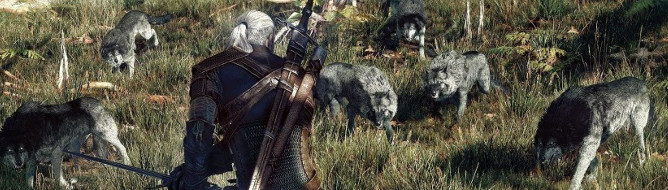 Witcher 3: Wild Hunt's new screens show beasts, combat