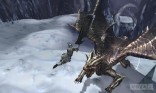monster_hunter_4_09