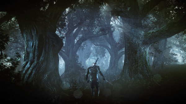 The_Witcher_3_Wild_Hunt_Geralt_alone_in_a_deep_and_dark_forest