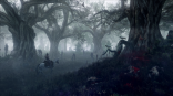 The_Witcher_3_Wild_Hunt_Geralt_travels_through_the_leshen_s_domain