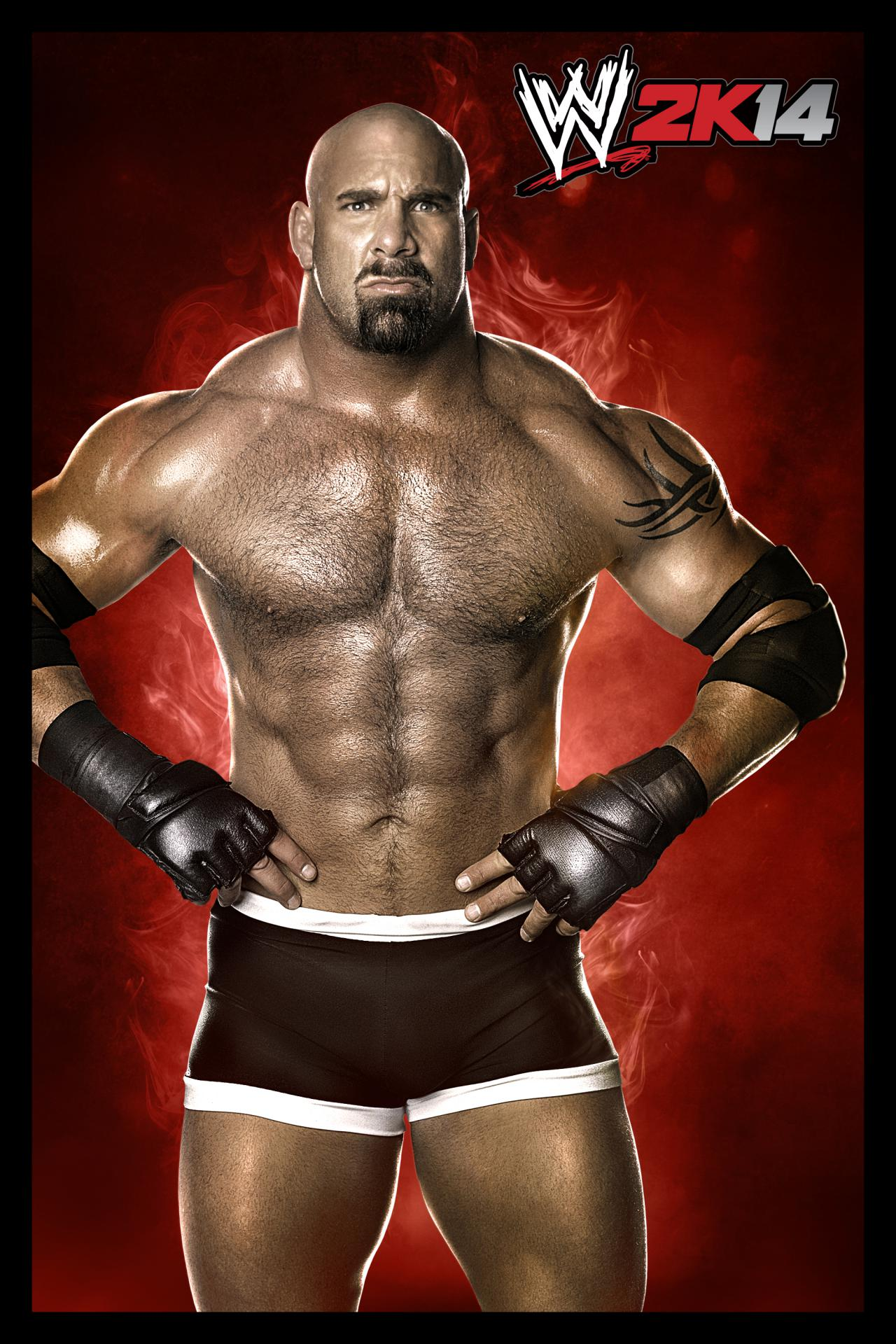 wwe 2k14's full character roster revealed, get the list & pics here