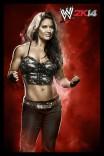 WWE2K14_Kaitlyn_CL