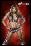 WWE2K14_Layla_CL