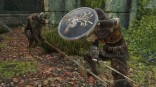Dark Souls 2 ingame shield winners (14)