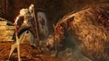 Dark Souls 2 ingame shield winners (9)