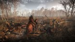 The Witcher 3 - new screens 012814 (3)