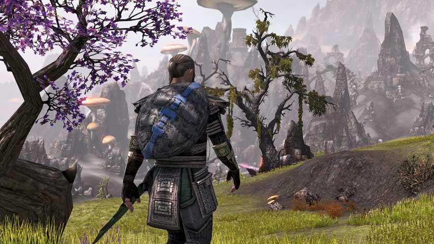 The Elder Scrolls Online: Skyrim skin can't make up for