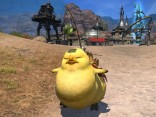 Final_Fantasy _14_A_Realm_Reborn_fat_chocobo_2