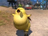 Final_Fantasy _14_A_Realm_Reborn_fat_chocobo_3