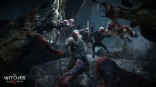 Witcher_3_Wild_Hunt_e3_2014 (14)
