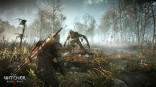 Witcher_3_Wild_Hunt_e3_2014 (23)