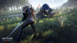 Witcher_3_Wild_Hunt_e3_2014 (27)