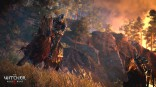 Witcher_3_Wild_Hunt_e3_2014 (8)