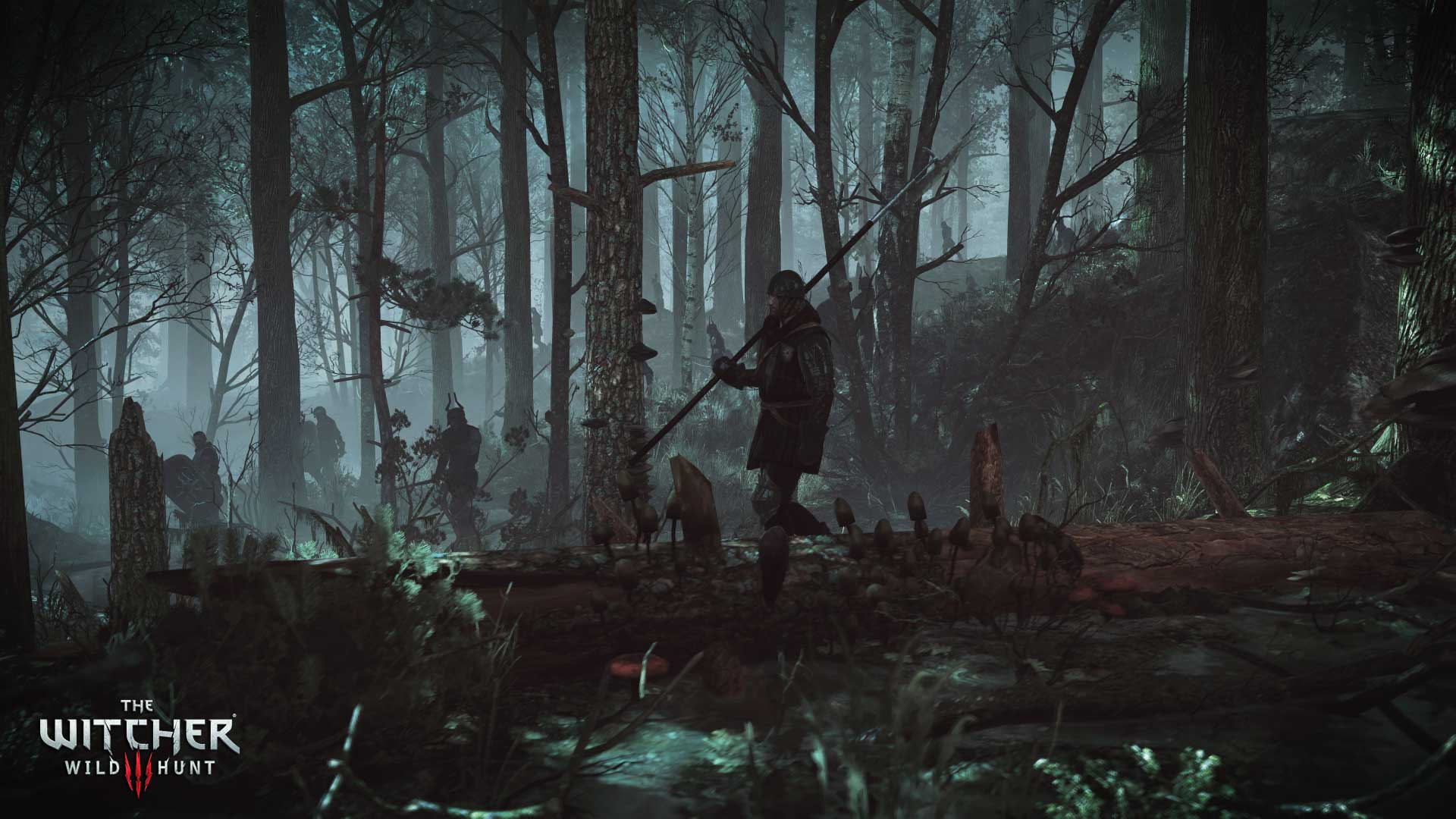 The witcher 3 an invitation from keira metz vg247 stopboris Image collections