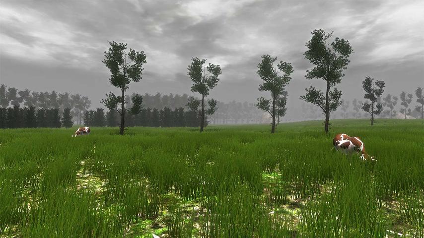grass_simulator