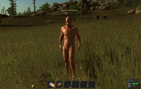 Your in-game penis size in Rust is based on your Steam ID | VG247