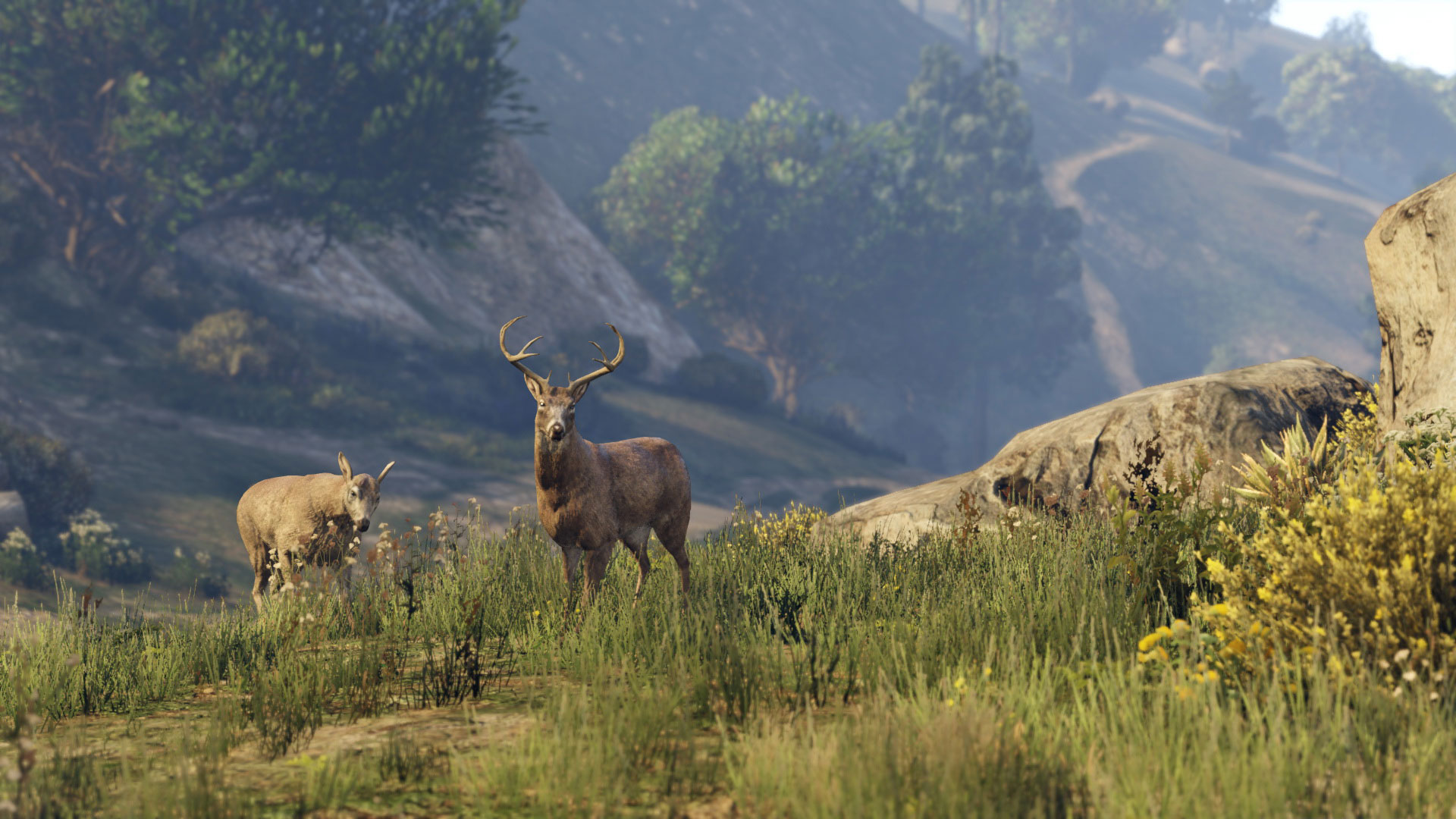RSG_GTAV_NG_Screenshot_033