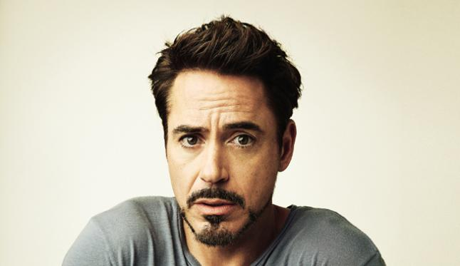 Robert Downey Jr. earned a 80 million dollar salary, leaving the net worth at 220 million in 2017